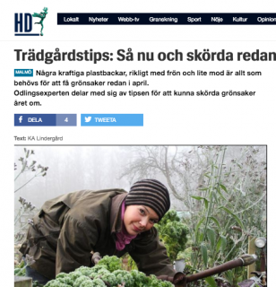 HD Sydsvenskan 160305