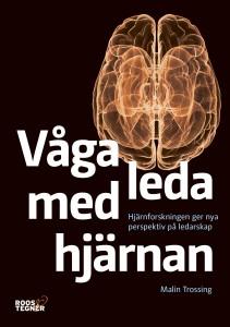 Vaga_leda_med_hjarnan_hr