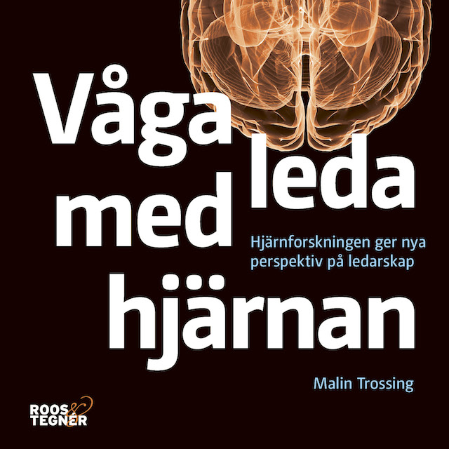 Vaga_leda_med_hjarnan_640_640