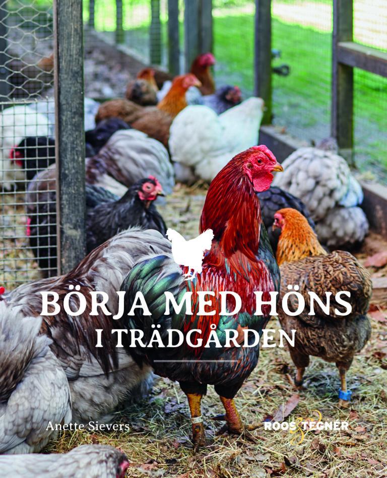 bok_borja_med_hons